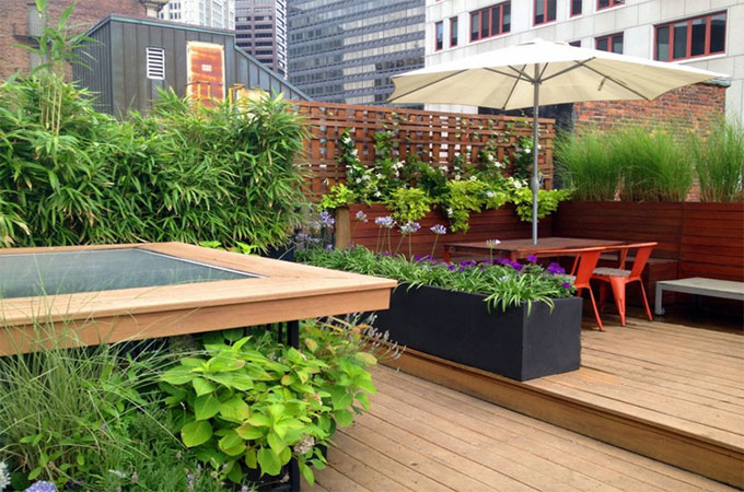 Amenager Une Terrasse Quelles Plantes